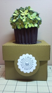 Green Cupcake and Coordinating Box