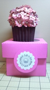 Pink Cupcake and Coordinating Box