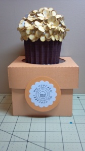 Yellow Cupcake and Coordinating Box