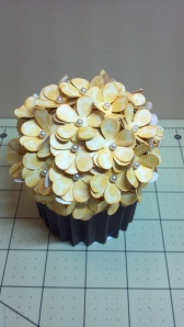 Yellow Cupcake Box