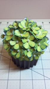 Green Cupcake Box