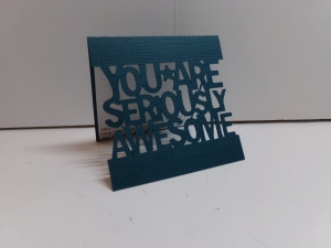 You Are Seriously Awesome Card